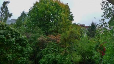 Ausblick in den Innenhof von einer ruhigen 2-Zimmer Wohnung